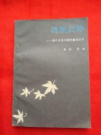 魂断武岭——蒋介石在大陆的最后日子