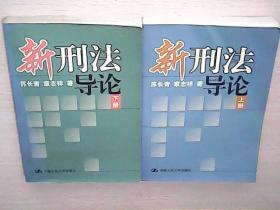 新刑法导论(上下) (库存书)