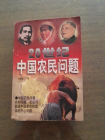 20世纪中国农民问题