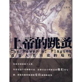 保证正版 上帝的跳蚤 王哲 云南出版集团公司 云南人民出版社