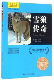 大奖动物小说:雪狼传奇