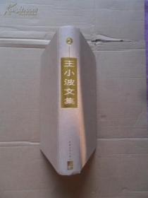 王小波文集(第二卷) 硬精装 王小波作品 1999 一版一印 无书衣