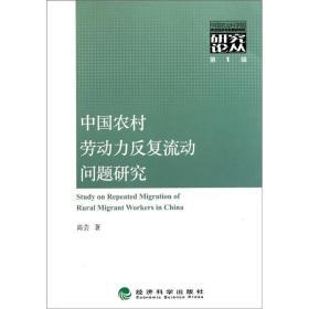中国农村劳动力反复流动问题研究