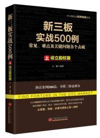 新三板实战500例 上:设立股权篇