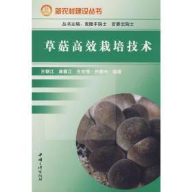 新农村建设丛书:草菇高效栽培技术