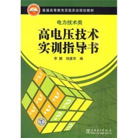 普通高等教育实验实训规划教材:高电压技术实训指导书(电力技术类)