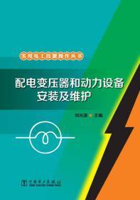 实用电工技能操作丛书:配电变压器和动力设备安装及维护