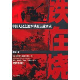 铁在烧:中国人民志愿军铁原大战实录