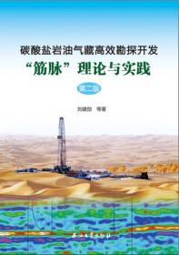 """碳酸盐岩油气藏高效勘探开发""""筋脉""""理论与实践(第二版)"""