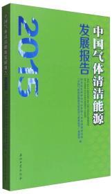 中国气体清洁能源发展报告(2015)