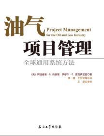 汽油项目管理