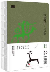 王小波作品集 青铜时代