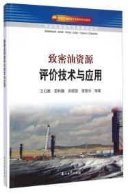 中国致密油气地质研究丛书:致密油资源评价技术与应用