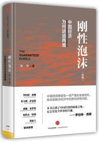 刚性泡沫(新版)中国经济为何进退两难 朱宁著 精装特价