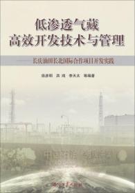 低渗透气藏高效开发技术与管理:长庆油田长北国际合作项目开发实践