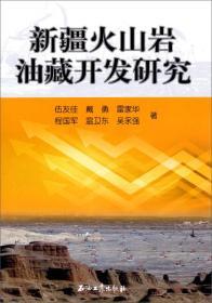 新疆火山岩油藏开发研究