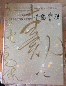 飞跃灵动・幻化万千的中国书法