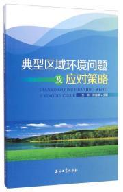 典型区域环境问题及应对策略