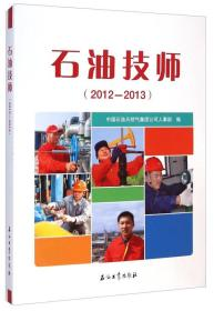 石油技师(2012-2013)