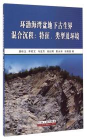 环渤海湾盆地下古生界混合沉积 专著 特征、类型及环境 董桂玉[等]著 huan bo