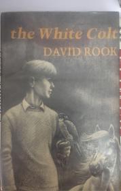 White Colt 白驹
