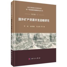 国外矿产资本开辟计谋研究