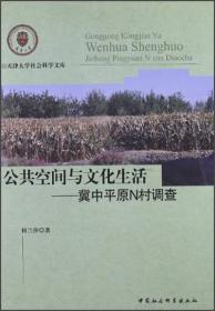 公共空间与文化生活:冀中平原N村调查