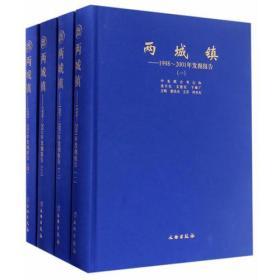 两城镇--1998~2001年发掘报告(全四册)
