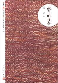 朝内166人文文库·中国当代长篇小说:战斗的青春