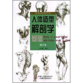 人体造型解剖学基础