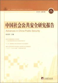 中国社会公共安全研究报告(2012年第1辑·总第1辑)  [Advances in China Public Security]