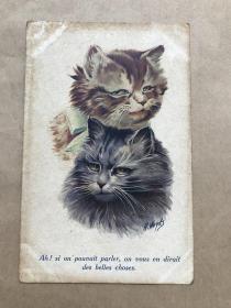 五十年代法国彩色明信片:双猫图案1张(绘画版),M037