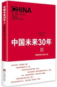 重塑梦想与现实之维-中国未来30年