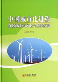 中国城市化进程的能源保障与风电产业发展格局