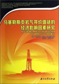 马塞勒斯页岩气井价值链的经济影响因素研究