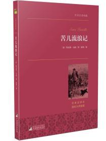 苦儿流浪记-世界名著典藏-名家全译本国际大师插图