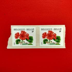 外国邮票欧洲比利时邮票外国邮票植物红花2张实物原图正品收藏珍藏集邮
