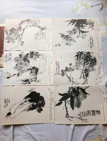 花鸟画散张。16开本存有24枚。一号箱!
