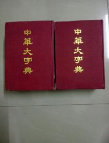 中华大字典 (缩印本全两册)