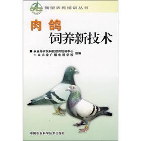 肉鸽饲养新技术