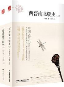 中国大历史——两晋南北朝史(上、下册)(第2版)