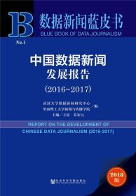 中国数据新闻发展报告(2016~2017)