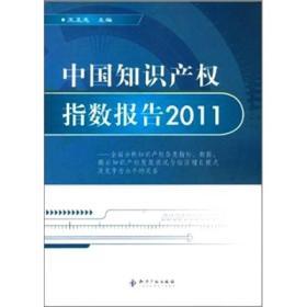 中国知识产权指数报告2011