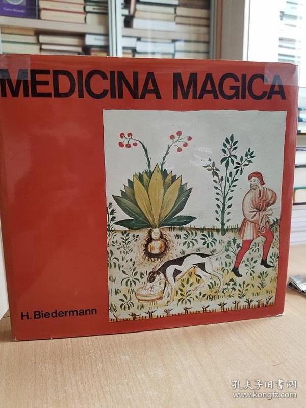 Medicina Magica. Metaphysische Heilmethoden in spätantiken und mittelalterlichen Handschriften. Mit dreissig Faksimile-Tafeln