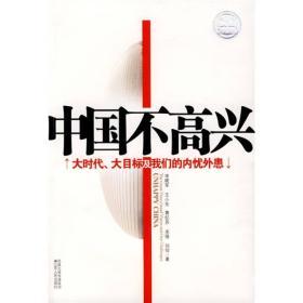 中国不高兴 宋晓军 江苏人民出版社 9787214056061