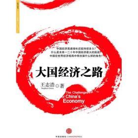 大国经济之路