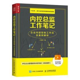 内控总监工作笔记 企业内部控制工作法及案例解析(未拆封)