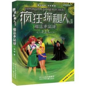 疯狂探秘人系列:魔法水晶球