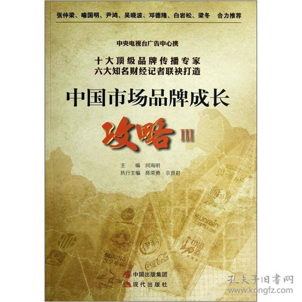 中国市场品牌成长攻略3