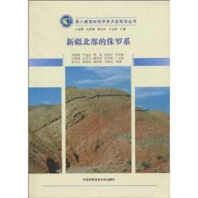 新疆北部的侏罗系